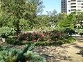 Circle Garden, Dec '08 - panoramio.jpg