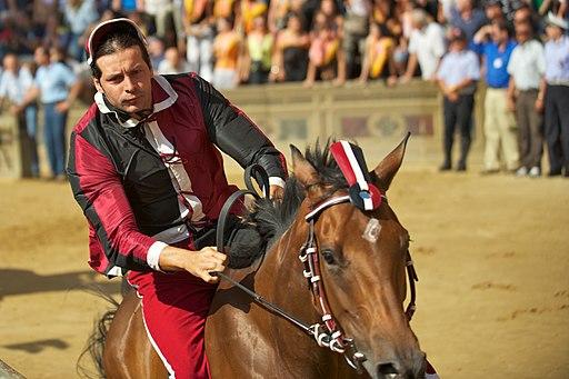Civetta con Marrocula montato da Andrea Mari detto Brio.