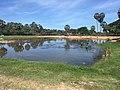 Cleaning Angkor Wat pond.jpg