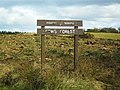 Clear fell at Fews Forest, Armaghbrague - geograph.org.uk - 1767177.jpg