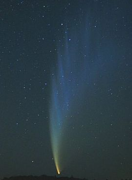 Comet McNaught Heathcote Vic. 23-1-2007.JPG