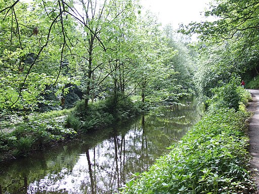 Compstall Etherow Canal 0232