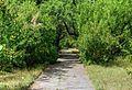 Conacul si parcul Balioz Ivancea Orhei (6).jpg