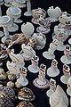 Conch Craft - Kolkata 2014-12-06 1172.JPG