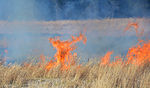 Controlled burns 150503-F-WT808-268.jpg