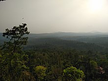 Coorg Valley View.jpg