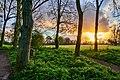 Cottingham Park IMG 0826 - panoramio.jpg