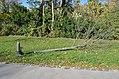 Coudenhove-Park choped tree.jpg