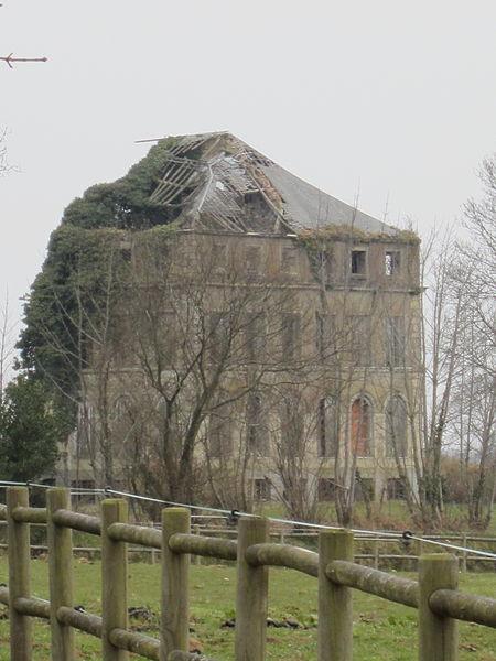 Château de la Mare, 19e, ruines