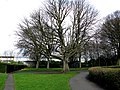 Croydon, Trees in Wandle Park - geograph.org.uk - 1775847.jpg