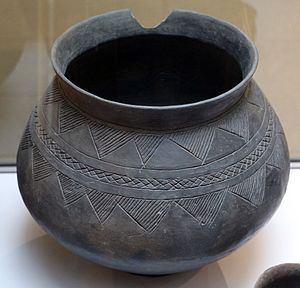 Golasecca culture - Cinerary urn