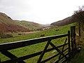 Cwmberwyn - geograph.org.uk - 290613.jpg