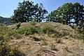 Dacian Fortress of Capalna 009.jpg