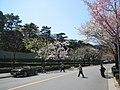 Daikan-cho - panoramio.jpg