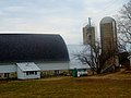 Dairy Farm with Two Silos - panoramio (3).jpg