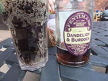 Dandelion Burdoch Soft Drink