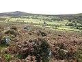 Dartmoor, Emsworthy - geograph.org.uk - 1018781.jpg