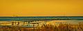 Das Watt vor Cuxhaven - Döse im letzten Licht des Tages (12397363895).jpg