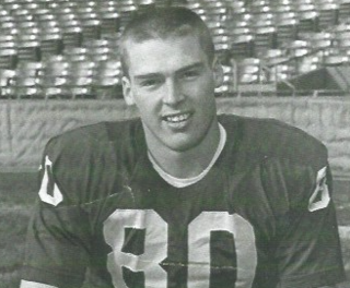 Dave Williams (wide receiver) American football wide receiver