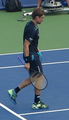 David Ferrer at W&S Open 2017.png