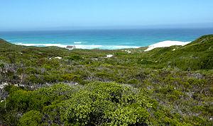 De Hoop Nature Reserve - Image: De Hoop Nature Reserve