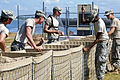 Defense.gov News Photo 110510-A-DS601-014 - U.S. Army soldiers construct sand-filled basket barriers on top of a levee along Lake Palourde in Morgan City La. on May 10 2011. The soldiers.jpg