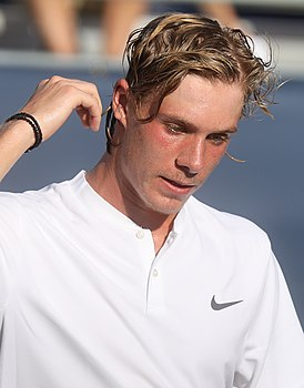 Denis Shapovalov (3) (43079342414).jpg