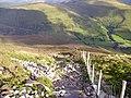 Descent from Mynydd Moel - geograph.org.uk - 1264746.jpg