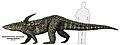 Desmatosuchus spurensis.jpg