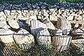 Dettagli dell'area archeologica di Luni.jpg