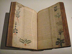 Materia medica - Dioscorides, De Materia Medica, Byzantium, 15th century.