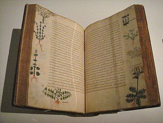 Herbal - Dioscorides' De Materia Medica, Byzantium, 15th-century manuscript, by which time the text had been in circulation for about 1500 years