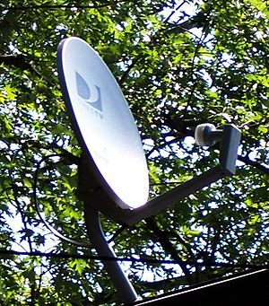 DirecTV - A standard DirecTV satellite dish with Dual LNB on a roof
