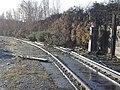 Disused railway - geograph.org.uk - 644560.jpg