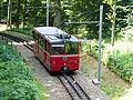 Dolderbahn Zurich 2013.jpg