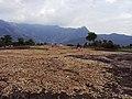 Dolmens @ Marayoor - panoramio (4).jpg