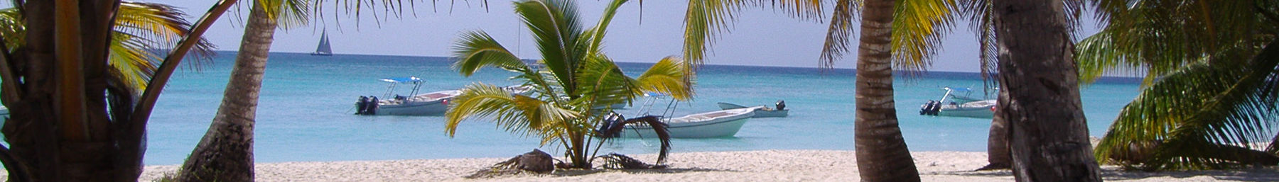 Dominican Republic banner Beach with palms and boats.jpg
