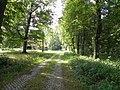 Dorfstraße ehem Ettenbostel.JPG