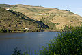 Douro valley (3913534870) (2).jpg
