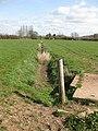 Drainage channel, Hampton Meadow - geograph.org.uk - 1219253.jpg