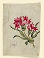 Drawing, Woodblock Trial Proof for a Printed Textile, 1790–1800 (CH 18167671-2).jpg