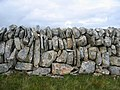 Dry Stone Wall - geograph.org.uk - 231638.jpg