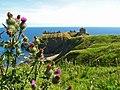 Dunnottar Castle - geograph.org.uk - 1549411.jpg