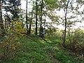 Dusetų sen., Lithuania - panoramio (129).jpg