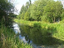 Greasbrough canal below the A633 culvert
