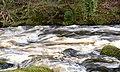 East Dart river after heavy rain (39008929621).jpg