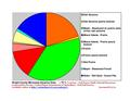 Eight County II Pie Charts.pdf
