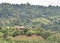 El Encanto Reserva Ecoturística.jpg