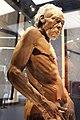 Em - Homo sapiens man model - 2.jpg
