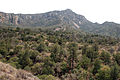 Emory Peak Chisos Mountains Big Bend DSC 5438 ed ad.jpg